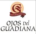 Ojos_guadiana